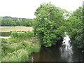 NY5218 : The River Lowther by M J Richardson