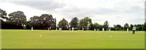 TL7003 : Cricket at Chelmer Park, Chelmsford by Chris Morgan