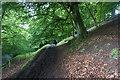 SO3996 : The Shropshire Way towards Bridges by Bill Boaden