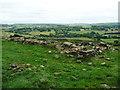 SE0529 : Ruin near the ancient enclosure, Mixenden, Ovenden by Humphrey Bolton