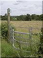 ST5963 : Shortcut to Stanton Drew by Neil Owen