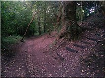 SZ0895 : Redhill: footpath O08 arrives on Sandy Way by Chris Downer