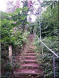 SZ0895 : Redhill: up the steps on footpath O19 by Chris Downer
