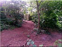 SZ0895 : Redhill: approaching footpath O12 on the common by Chris Downer