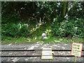 SK3815 : Footpath Level Crossing by Ian Calderwood