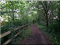 SZ1095 : Muscliff: bridleway M18 heads for Muscliffe Lane by Chris Downer
