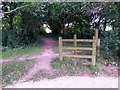 SZ1095 : Muscliff: footpath M17 heads north by Chris Downer