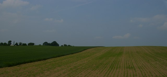 Fields south of Whitley Crest, from the railway