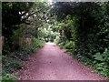 SZ0794 : Talbot Village: this track is footpath N15 by Chris Downer