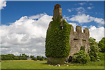 N0320 : Castles of Leinster: Lisclooney, Co. Offaly (1) by Mike Searle