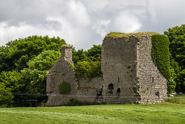 Castles of Leinster: Clonlyon, Co. Offaly (2)