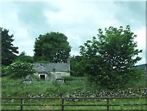 J0718 : Ruined cottage between the R132 (Dublin Road) and the minor Newtown Road by Eric Jones