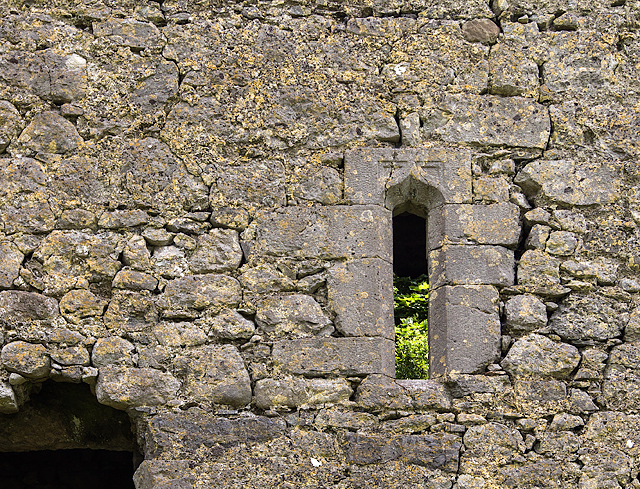 Castles of Leinster: Clonlyon, Co. Offaly (4)