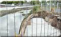 J3674 : Connswater works, Belfast - July 2016(4) by Albert Bridge