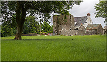 N5757 : Castles of Leinster: Killagh, Co. Westmeath (2) by Mike Searle