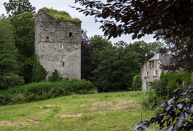 Castles of Leinster: Moone, Co. Kildare (1)