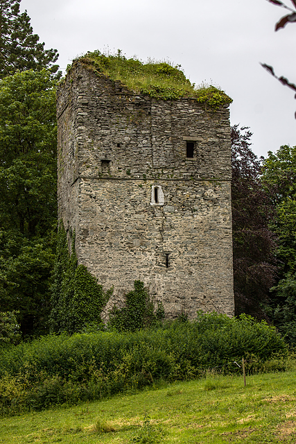 Castles of Leinster: Moone, Co. Kildare (2)