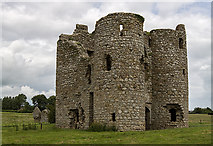 S7458 : Castles of Leinster: Ballyloughan, Co. Carlow (2) by Mike Searle