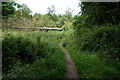 SE5116 : Footpath towards Smeaton Pasture by Ian S