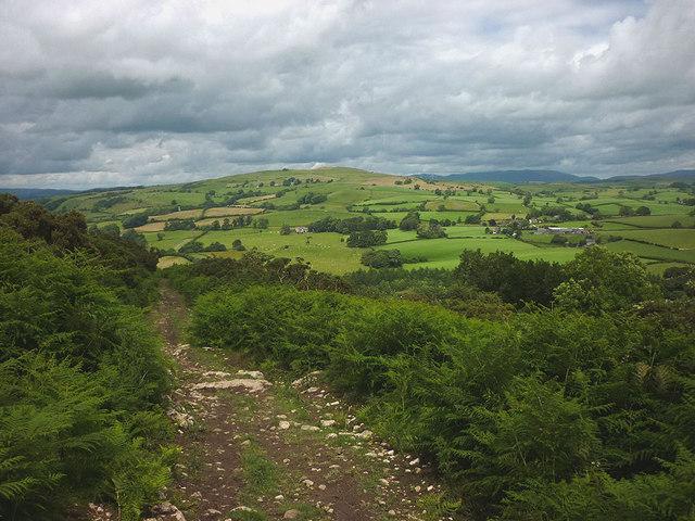 Bridleway above Newbiggin