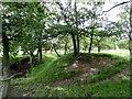 NZ1742 : Moat at Castle Steads, Esh Winning by Robert Graham
