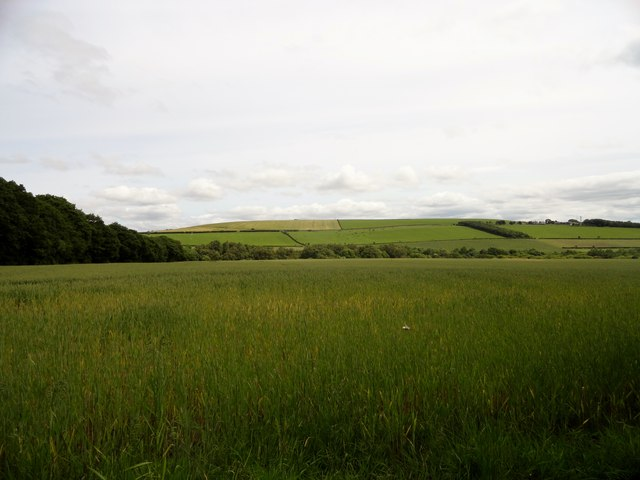 View across the fields west of Esh Winning