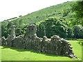 SO0571 : South wall, Abaty Cwm hir / Cwmhir Abbey by Christine Johnstone