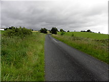 H5375 : Fernagh Road, Drumnakilly by Kenneth  Allen