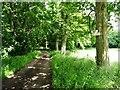 NY7021 : Private road to Flakebridge and Brackenthwaite by Christine Johnstone