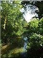 TL9580 : Little Ouse River off Knettishall Road Bridge by Adrian Cable