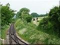 SU6232 : Two railways, west of Ropley Station by Christine Johnstone