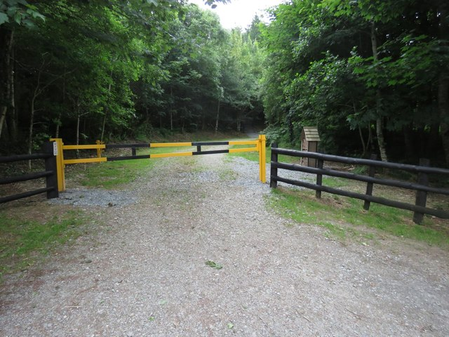 Entrance to forest