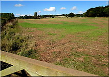 SO6031 : South Herefordshire field, Brockhampton by Jaggery