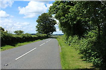 NX4355 : The Road to Newton Stewart by Billy McCrorie
