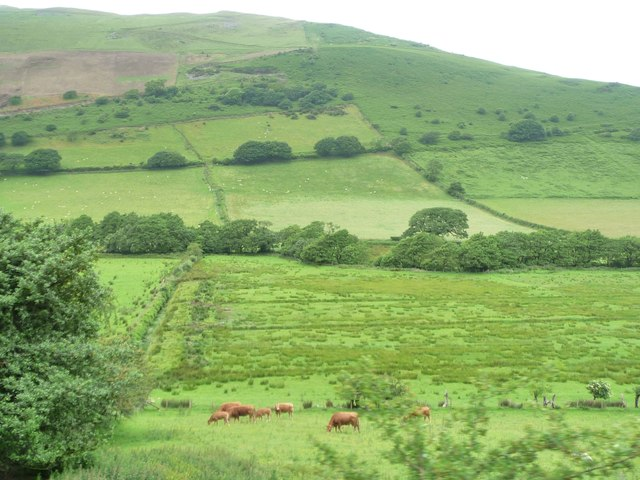 Farmland with parallel drains, valley of Afon Fathew