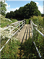 TM0179 : Footbridge over the Little Ouse River by Adrian Cable