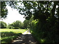 TM0178 : Fen Lane, Blo Norton by Adrian Cable