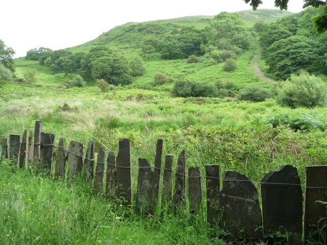 Slate fence, Dolgoch Station, Talyllyn Railway