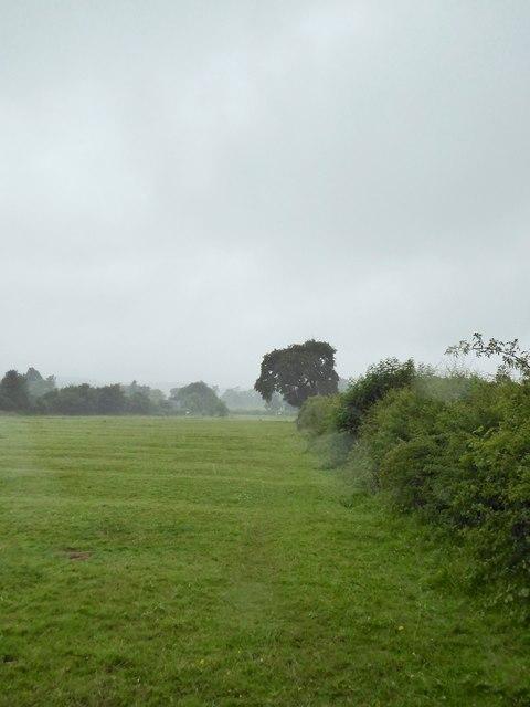Butterton: field path near church