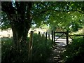 SZ1096 : Throop: the riverside path rejoins the Stour Valley Way by Chris Downer