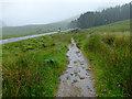 NN2256 : The West Highland Way at Altnafeadh by John Allan