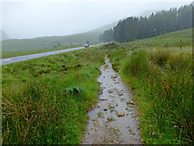 NN2256 : The West Highland Way at Altnafeadh by John Allan