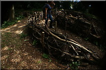 TQ1572 : View of log fencing in a children's play area in the woodland at the back of Strawberry Hill House by Robert Lamb
