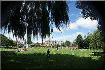 TQ1672 : View of Cross Deep from Radnor Gardens by Robert Lamb