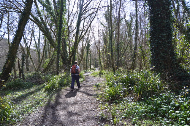 Tamar Valley Discovery Trail