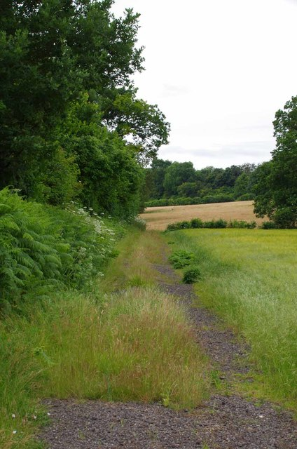 Path by Little Hurst Wood