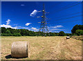 SU0907 : A field at Potterne Farm - summer at last! by Mike Searle