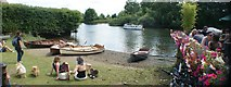 TQ1673 : View of the Thames from Riverside by The White Swan pub by Robert Lamb