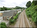 ST3391 : Caerleon, railway lines by Mike Faherty