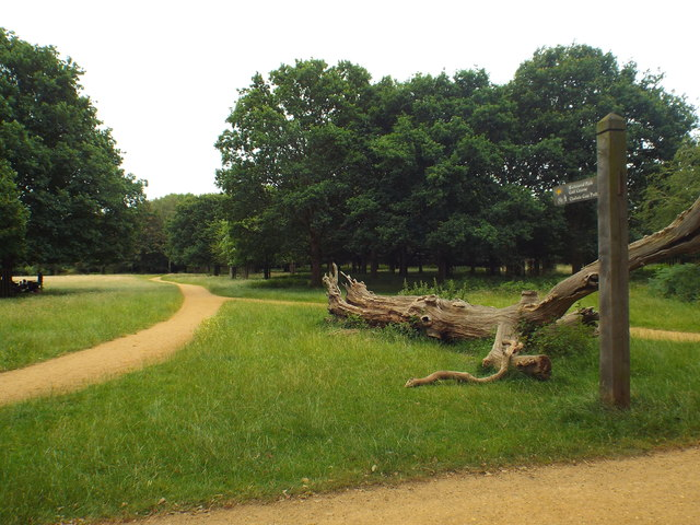 Signpost and path in Richmond Park